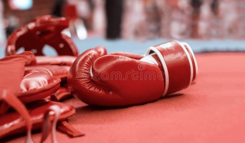 Guantoni da pugile rossi e guardie cape d'inscatolamento per le arti marziali fotografia stock