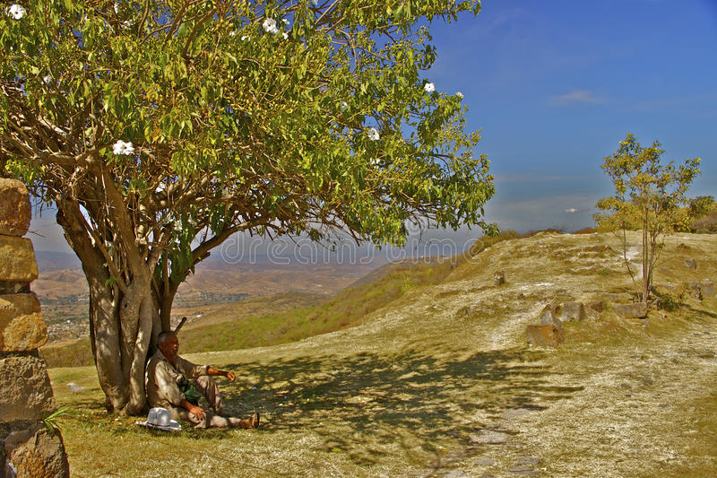 Guard resting. Monte Alban. Guard resting in the shade of one of the white flowered morning glory trees that are said to have given Monte Alban it´s name royalty free stock photo