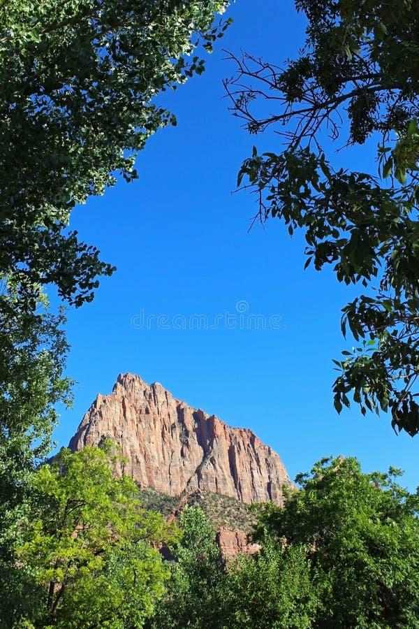 Guarda Campground de Zion National Park fotos de stock royalty free