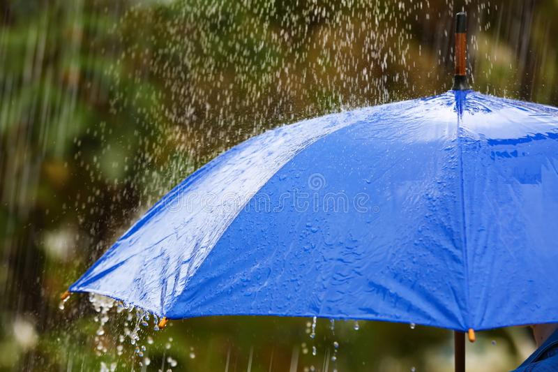 Guarda-chuva brilhante sob a chuva na rua fotos de stock