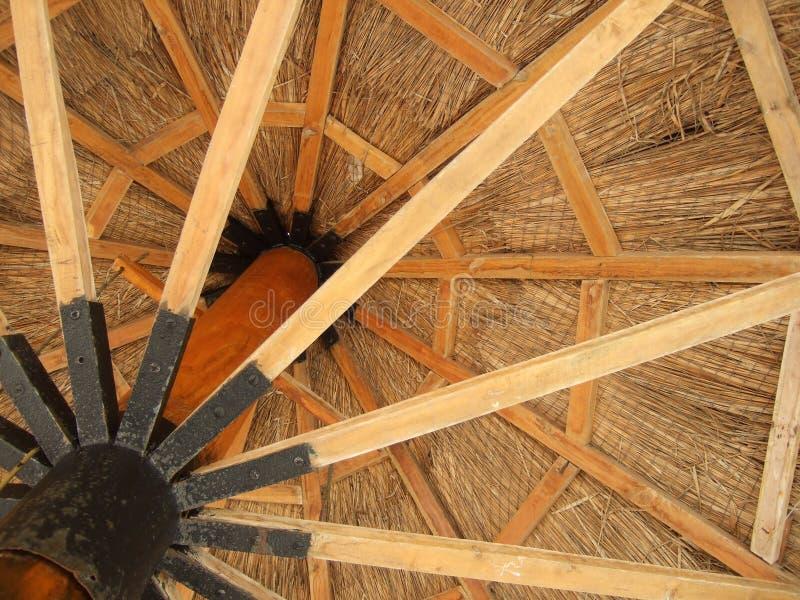 Guarda-chuva de madeira