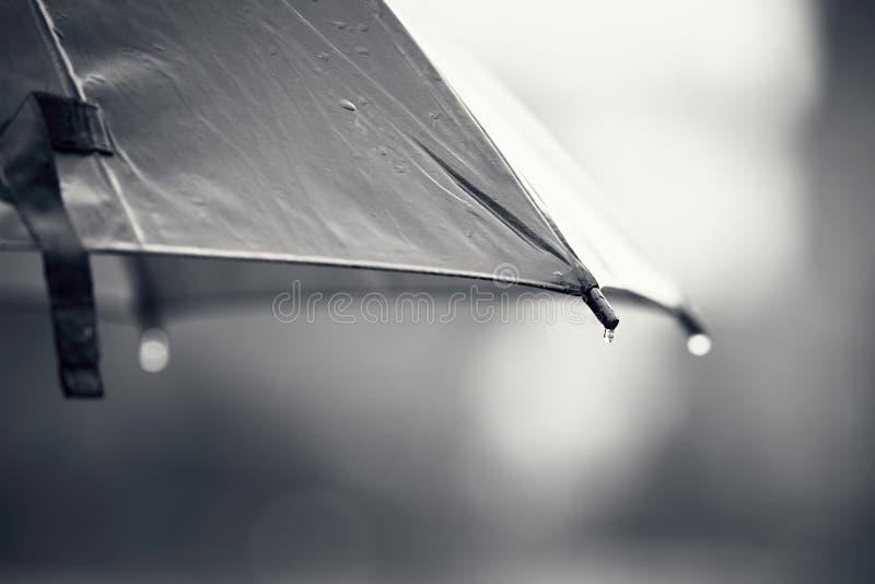 Guarda-chuva durante a chuva fotos de stock