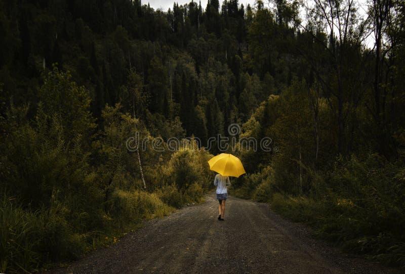 Guarda-chuva e caminhadas bonitos do amarelo da posse da mulher em uma estrada secundária sob a chuva imagens de stock
