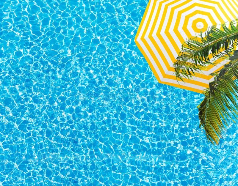 Guarda-chuva e palmeira da superfície da associação de cima de foto de stock