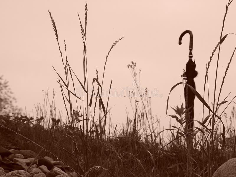 Download Guarda-chuva no monte foto de stock. Imagem de vara, hilltop - 107080