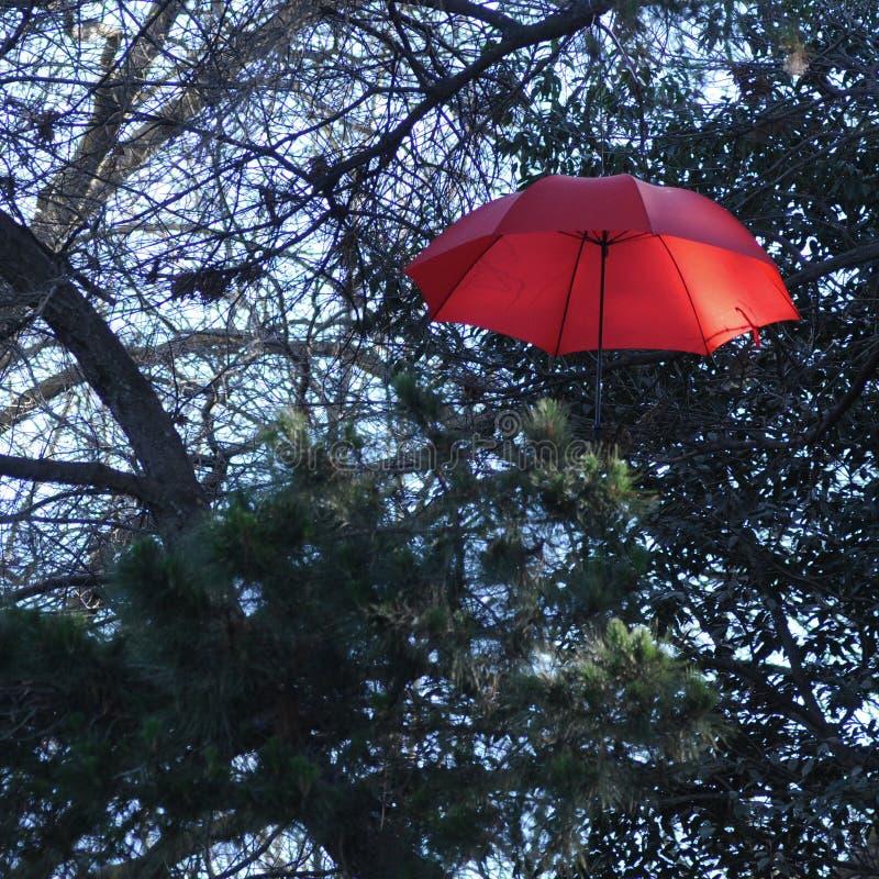 Guarda-chuva vermelho do vintage que flutua acima das árvores imagens de stock royalty free