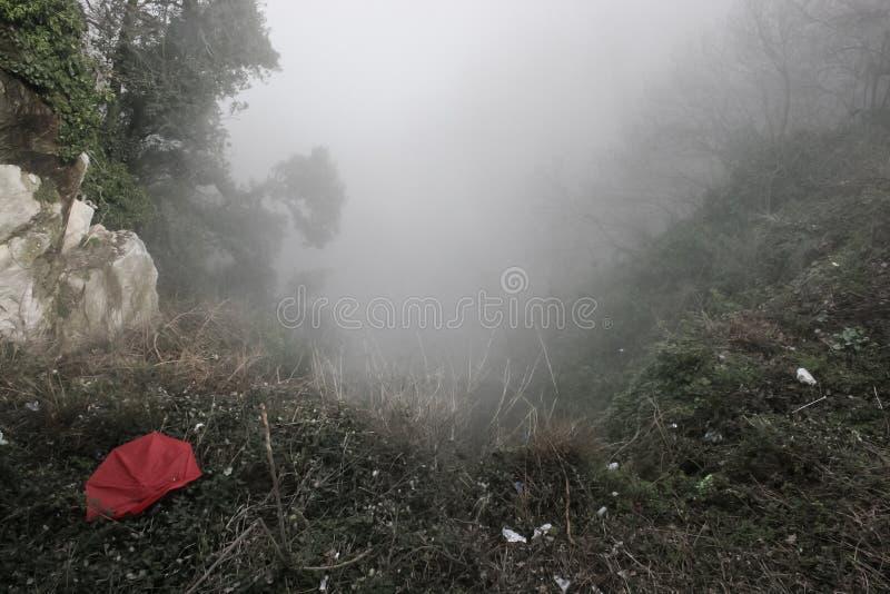 Guarda-chuva vermelho esquecido na névoa pesada nas montanhas foto de stock royalty free