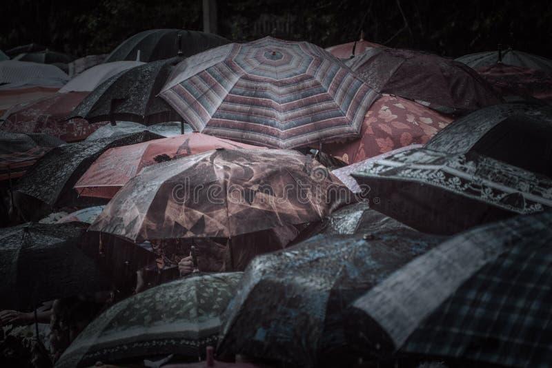 Guarda-chuvas foto de stock royalty free
