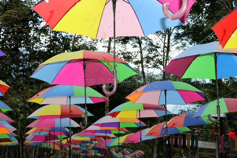Guarda-chuvas coloridos - Bornéu Malásia Ásia imagens de stock