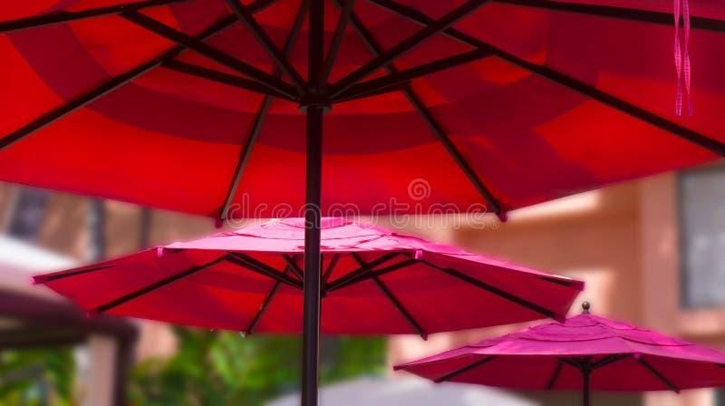 Guarda-chuvas cor-de-rosa do café imagens de stock