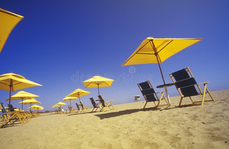 Guarda-chuvas e cadeiras de praia amarelos, Ventura, Califórnia imagem de stock royalty free