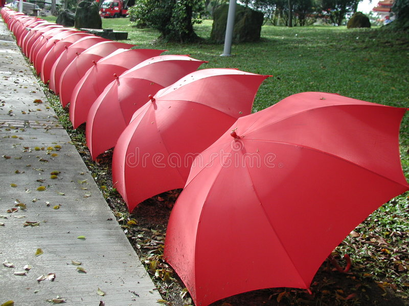 Guarda-chuvas em uma linha fotografia de stock royalty free