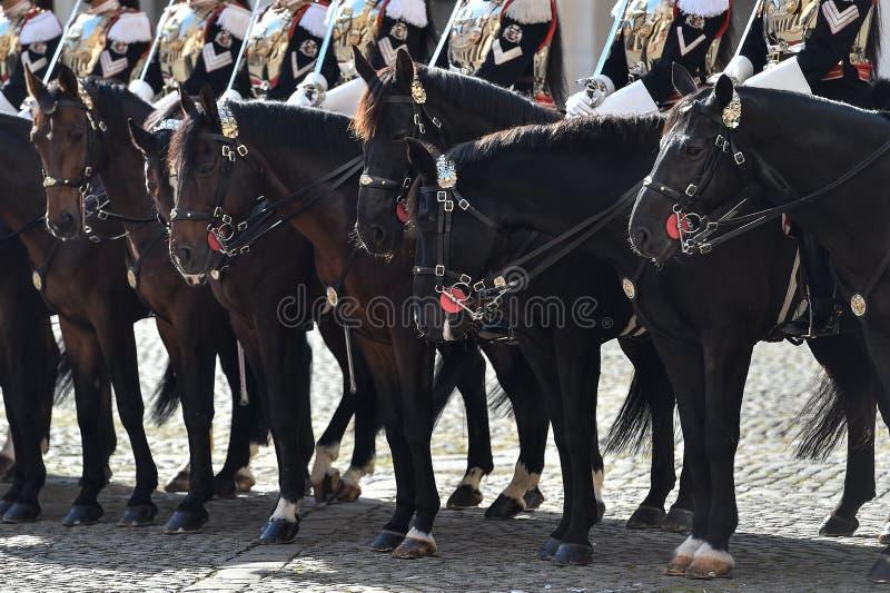 Guarda nacional italiana da honra durante uma cerimônia bem-vinda no palácio de Quirinale imagens de stock