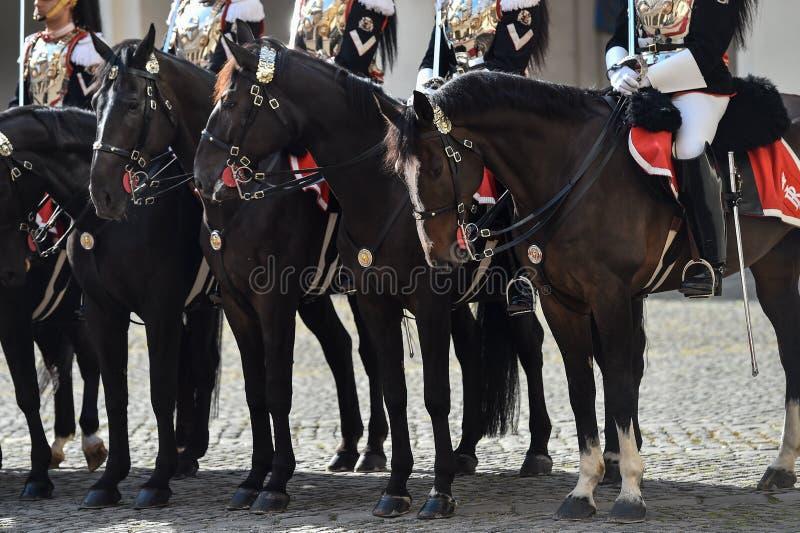 Guarda nacional italiana da honra durante uma cerimônia bem-vinda no palácio de Quirinale imagem de stock