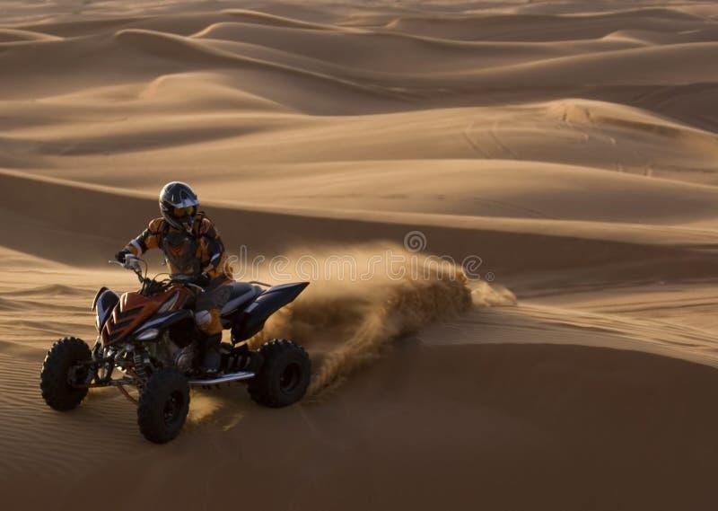 Guardabosques del desierto en la acción imágenes de archivo libres de regalías