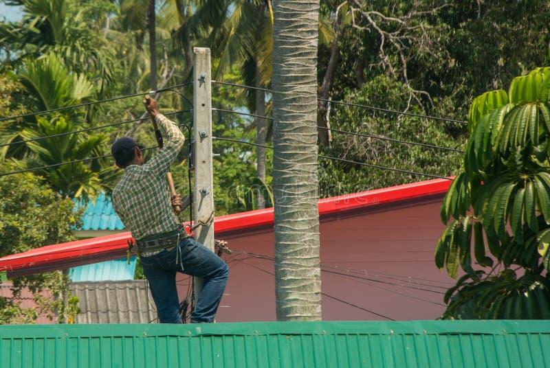 Guardalinee dell'elettricista che lavora con la luce sul palo di potere elettrico della posta fra gli alberi, vista della parte p immagini stock libere da diritti