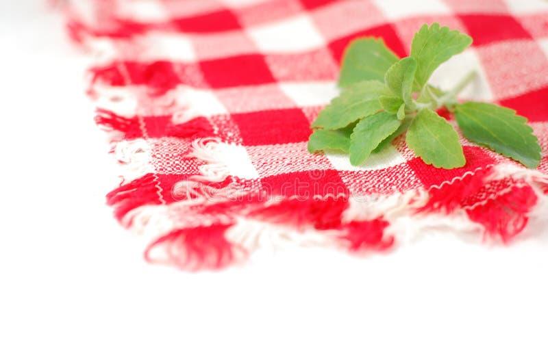 Guardanapo Checkered e stevia imagem de stock
