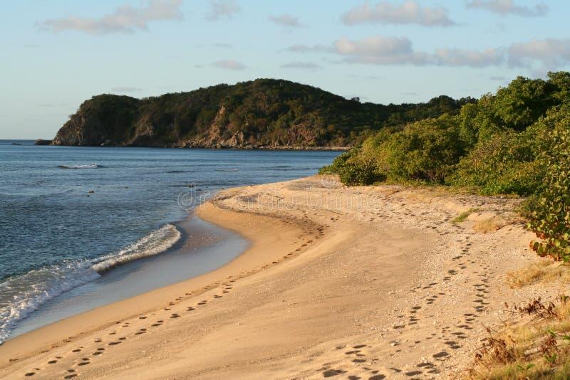 guardando giù la spiaggia lunga della baia fotografie stock libere da diritti
