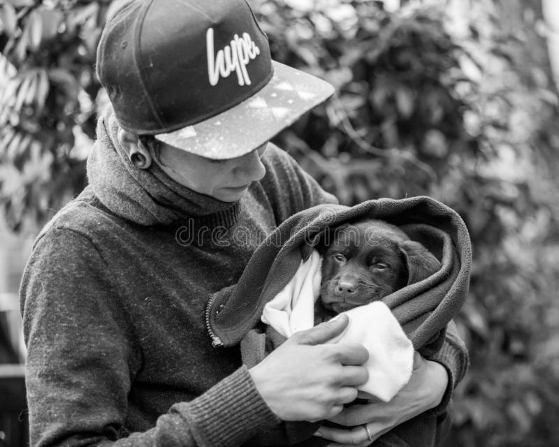 Guardando um cachorrinho em uma cobertura no parque em uma exposição de cães fotografia de stock royalty free