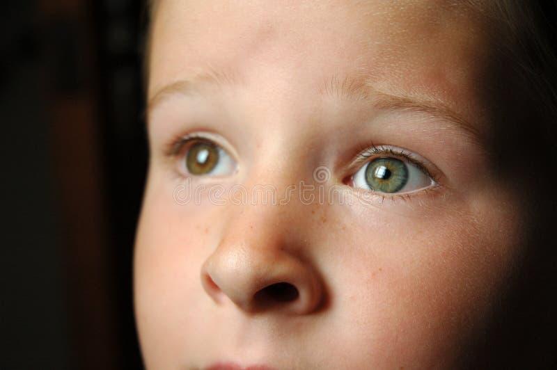 Guardare Gli Occhi Fisso Fotografie Stock Libere da Diritti