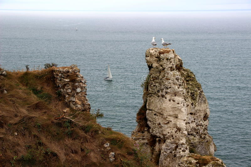 Guardiães do mar fotografia de stock