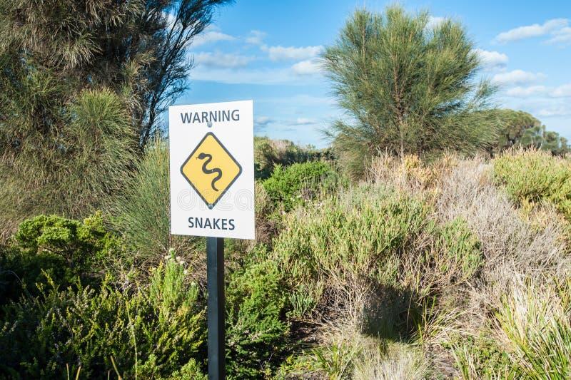 Guardi da dei serpenti! fotografia stock