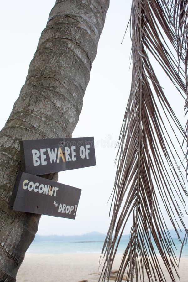 Guardi da dell'etichetta di goccia della noce di cocco immagini stock libere da diritti