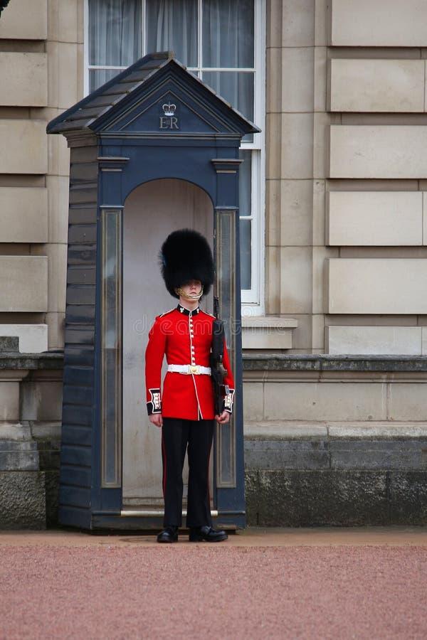 Guardia del Buckingham Palace fotos de archivo