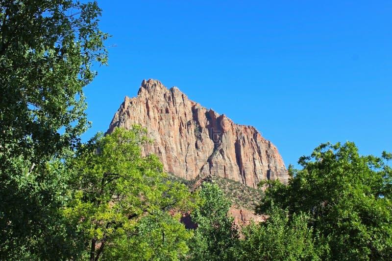Guardia notturna Campground di Zion National Park fotografia stock libera da diritti