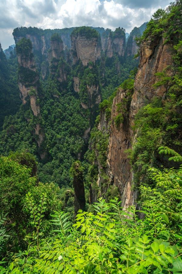 Guardia panoramica di Zhangjiajie Park fotografia stock