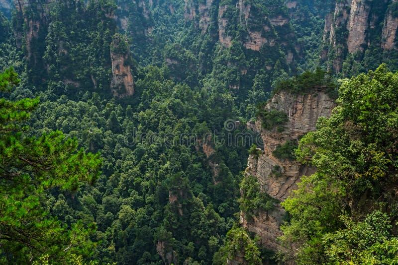 Guardia panoramica di Zhangjiajie Park fotografia stock libera da diritti