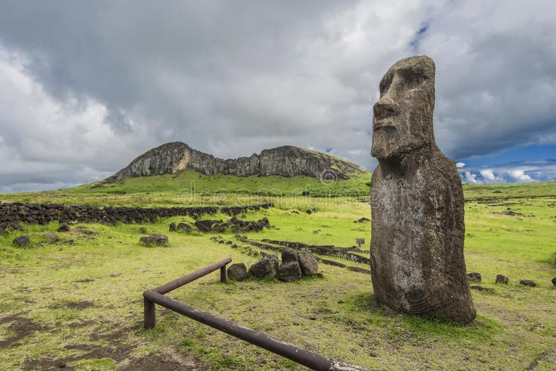 The guardian moai of the Rano Raraku volcano. The Rano Raraku one of the volcanoes of the Easter Island, cradle and cave of the moais stock images