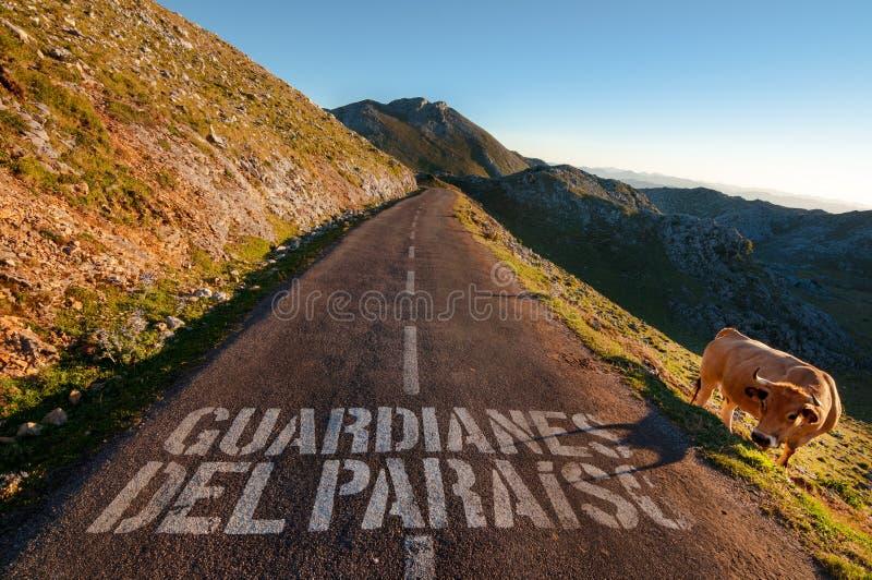 Guardianes del Pariaiso Guardians du paradis, route de haute montagne photo stock