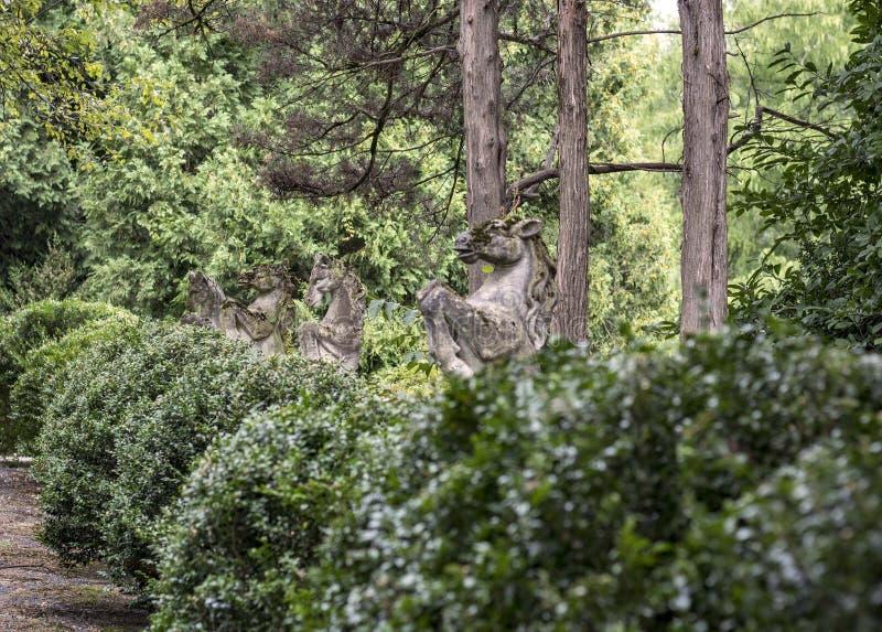 Guardias de caballo de piedra imagen de archivo