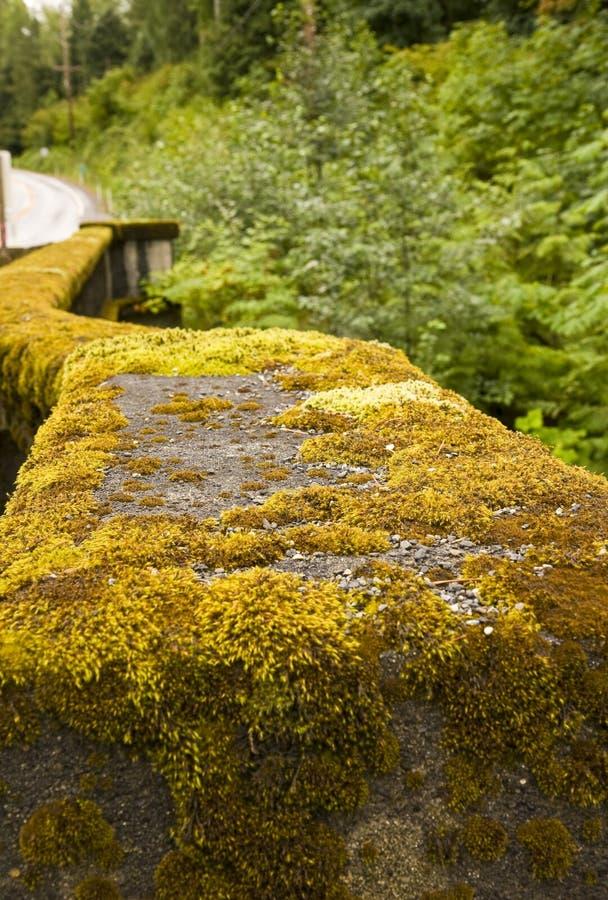 Guardrail Mossy foto de stock