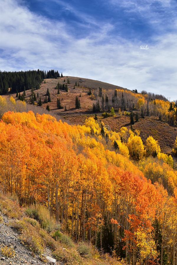 Guardsman Pass views of Panoramic Landscape of the Pass from the Brighton side by Midway and Heber Valley along the Wasatch Front. Rocky Mountains, Fall Leaf royalty free stock image