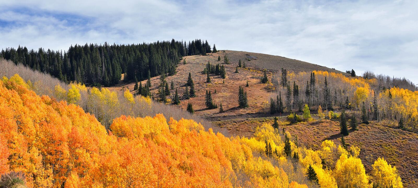 Guardsman Pass views of Panoramic Landscape of the Pass from the Brighton side by Midway and Heber Valley along the Wasatch Front. Rocky Mountains, Fall Leaf royalty free stock photography