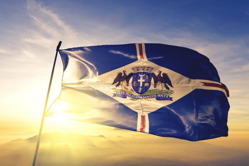 Guarulhos med brasiliansk flagga som viftar på toppen av soldimma fotografering för bildbyråer