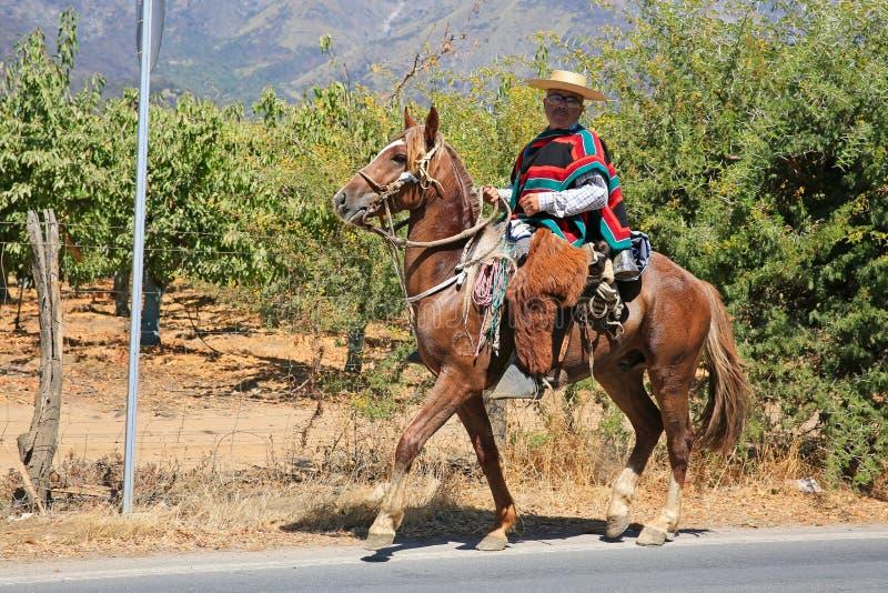 Guasa,在马背上传统礼服的智利牛仔 库存图片