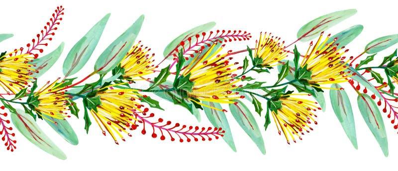 Guasz bezszwowa kwiecista granica z żółtym kwiatem, zieleń liśćmi i czerwonymi kwiecistymi gałąź, ilustracja wektor