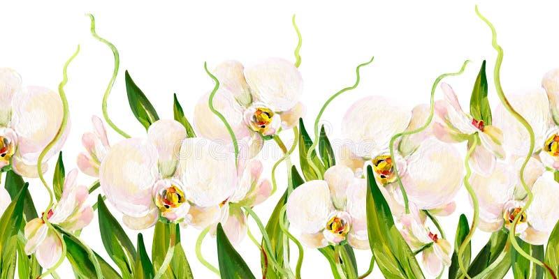 Guasz bezszwowa tropikalna granica z białymi zieleń liśćmi i orchideami ilustracja wektor