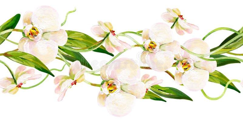Guasz bezszwowa tropikalna horisontal granica z białymi zieleń liśćmi i orchideami ilustracji