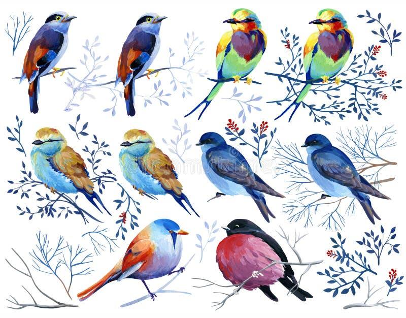 Guasz kolekcja ptaki na gałąź i liściach royalty ilustracja