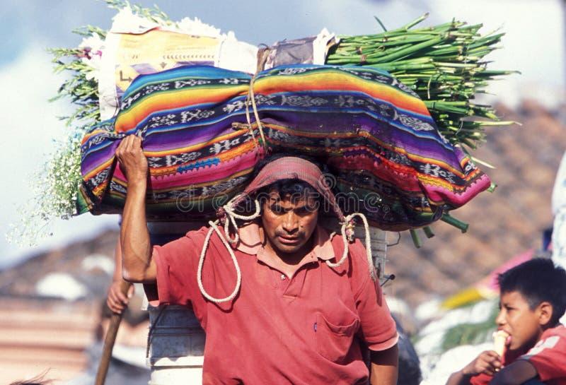 GUATEMALA DA AMÉRICA LATINA CHICHI fotos de stock royalty free