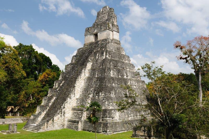 Tikal. Ruinas mayas en Guatemala foto de archivo libre de regalías
