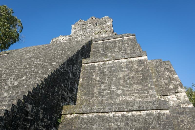 Guatemala som är mayan fördärvar i djungeln i Tikal royaltyfri foto