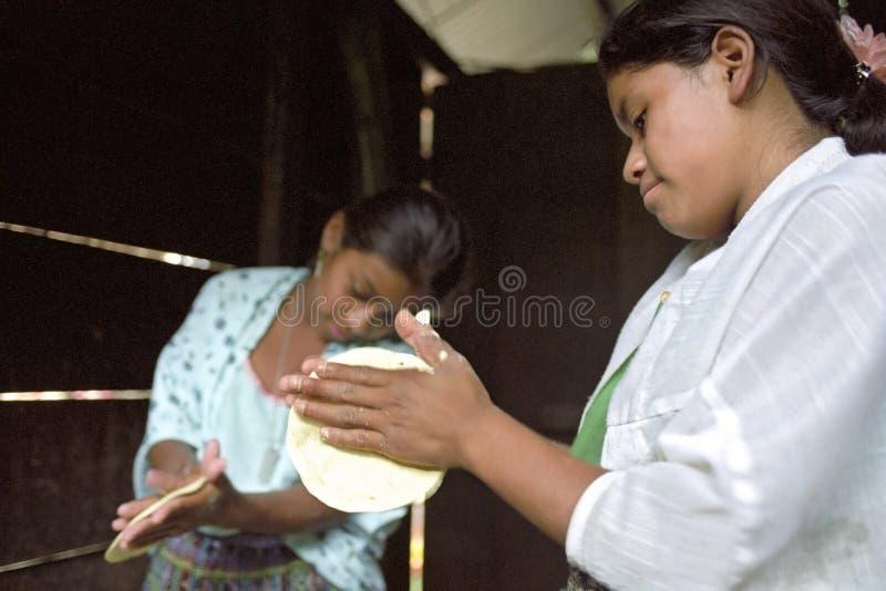 Guatemalansk indisk tonår som förbereder tortillor royaltyfria bilder