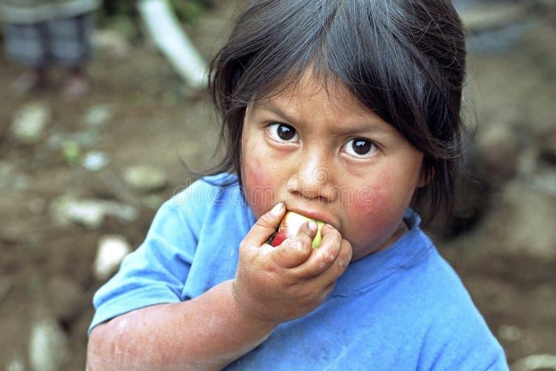 Guatemaltekisches indisches Mädchen des Porträts, das einen Apfel isst stockbild
