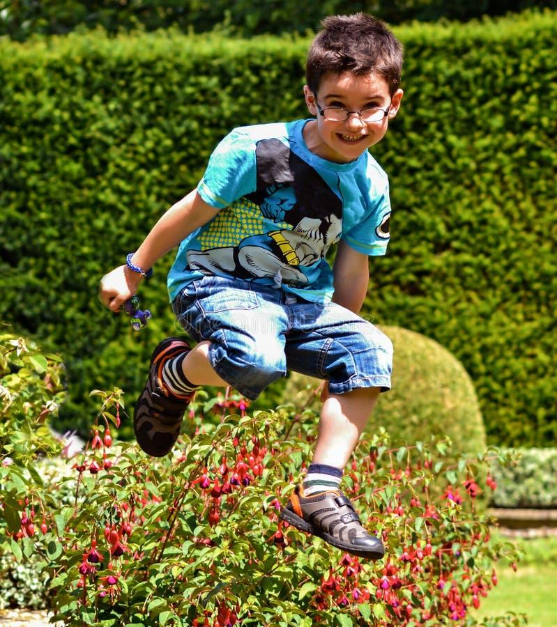 ¡GUAU, mirada en mí salto! fotos de archivo
