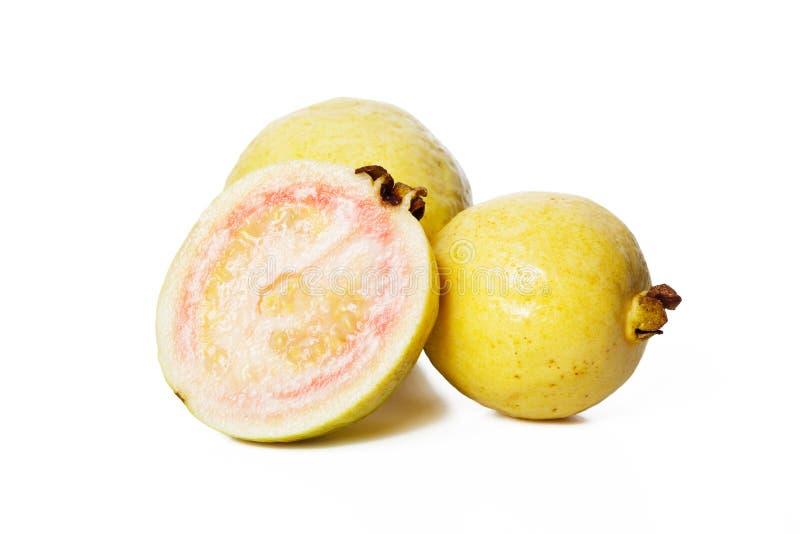 guava плодоовощ стоковое изображение rf